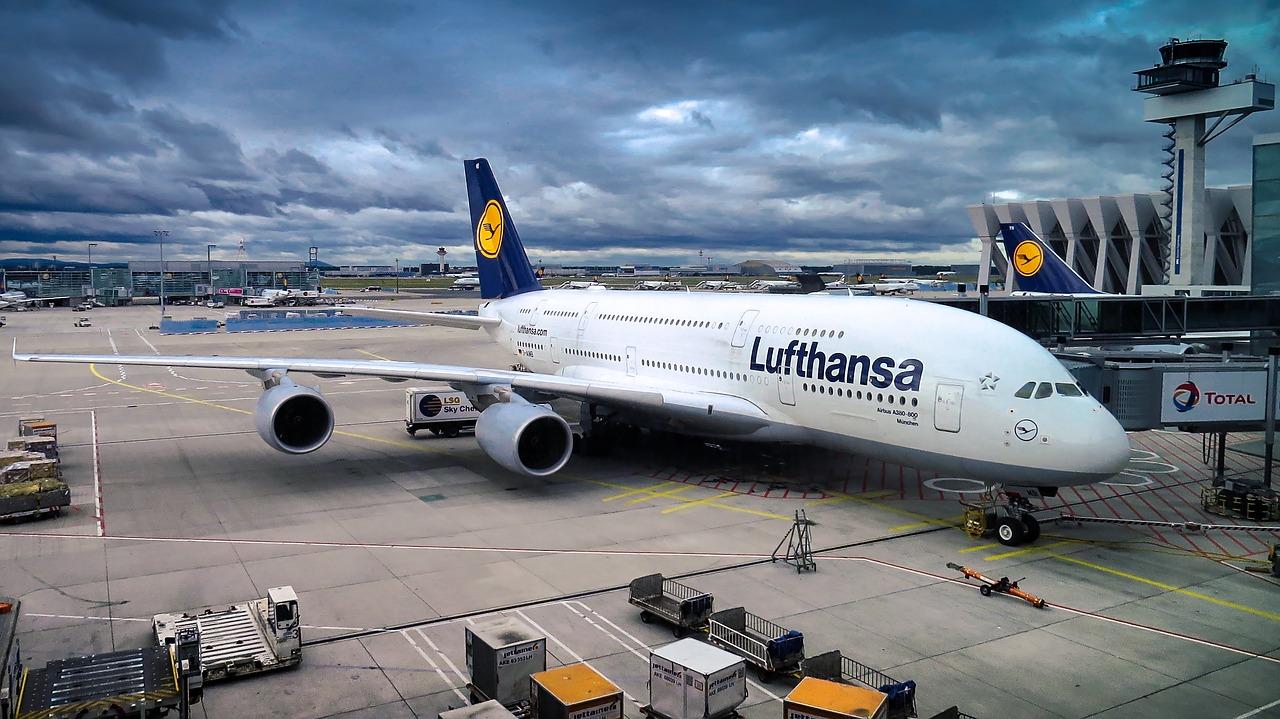 Przewóz psów i innych zwierząt liniami lotniczymi Lufthansa.